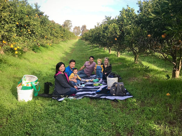 Private Picnic