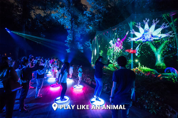 Rainforest Lumina – Singapore Zoo