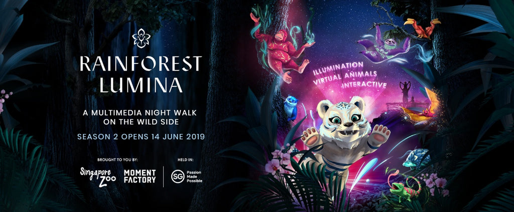 Get Ready for Rainforest Lumina Season 2 at The Singapore Zoo!