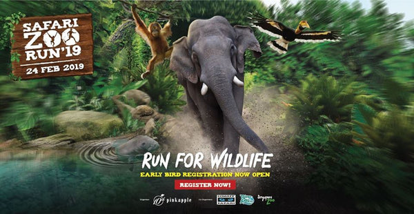 Run for Wildlife with Your Little Humans at Safari Zoo Run!