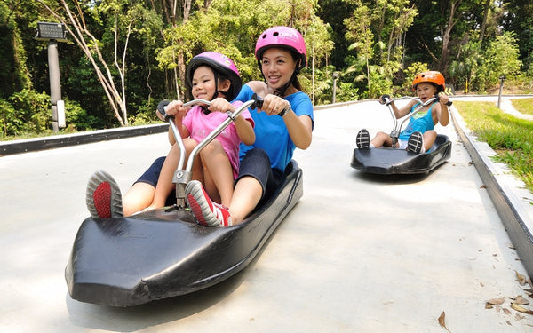 Hit the Curves on a Luge at Sentosa