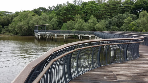 Things to do this Weekend: Celebrate World Wetlands Day with Your LOs! - Sungei Buloh Reservoir