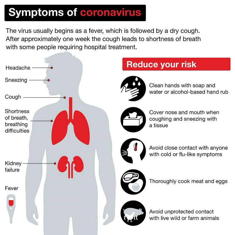 Coronavirus and the Precautions that You Can Take