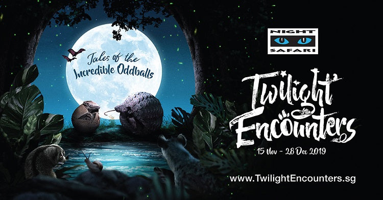 Year-End Holidays 2019 - Night Safari Twilight Encounters
