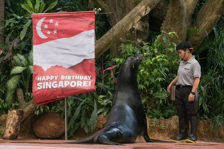 Wildlife Reserves Singapore Parks | Local Residents Exclusive National Day Promotions
