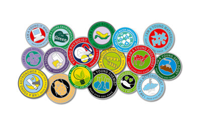 Young Scientist Badge Scheme (Online)