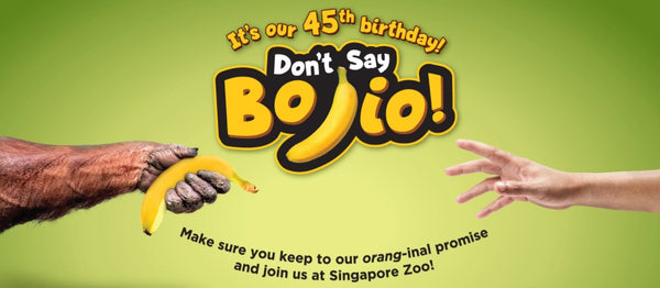 Things to do this Weekend: Join in the Merrymaking at Singapore Zoo's 45th Birthday Celebrations with Your LOs!