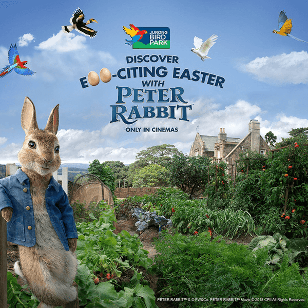 Things to do this Weekend: Visit Peter Rabbit with Your Little Ones @ Jurong Bird Park!