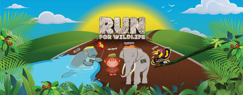 Safari Zoo Run