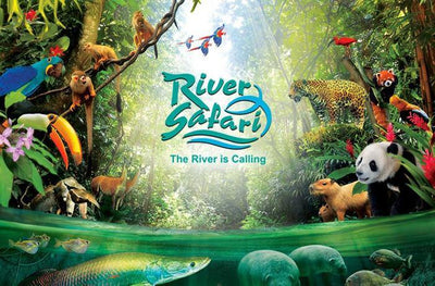 River Safari includes Amazon River Quest + River Safari Cruise: Discounted Tickets from $23