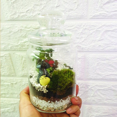 The Green Capsule: Closed Ornamental Terrarium DIY Kit @ Just $45 (Delivery Fee Inclusive)