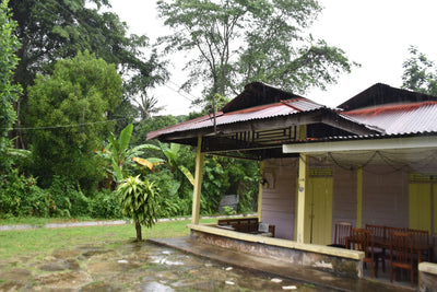 Kampung Experience Private Tour - Visit The Last Remaining Kampung in Singapore