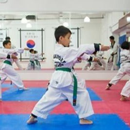 Kid's Taekwondo Class x 12 (1 Term) with Registration Fee Waiver @ $456 (U.P $530)