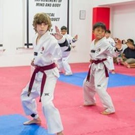 Kid's Taekwondo Class x 4 (1 month) with Registration Fee Waiver @ $160 (U.P$ 210)