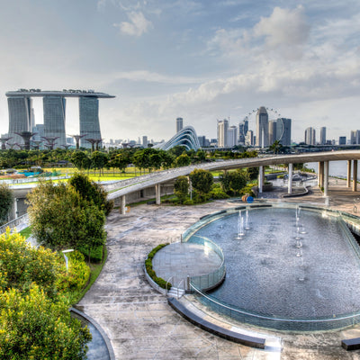 Learn About Singapore's Water Story and Sustainability in a Private Tour!