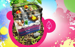 2-Hour Scenic Terrarium Making Workshop for 1 Person @ $35 (U.P. $50) - BYKidO