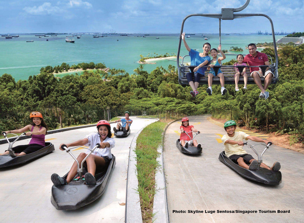 Skyline Luge: Discounted tickets from $16.50