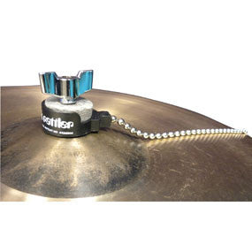 This is a picture of a ProMark Cymbal Rattler