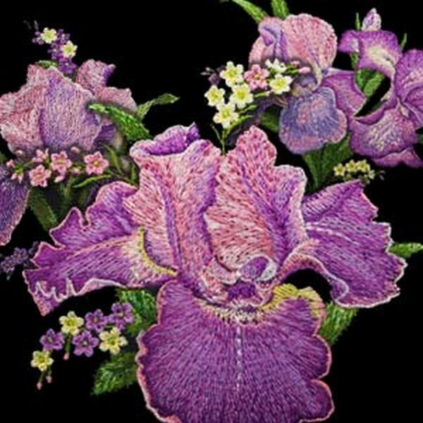 OESD Irresistible Iris by Ann Lauer for Benartex Studios available in Canada at The Quilt Store