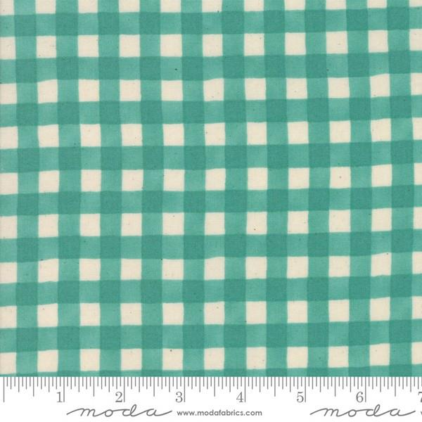 Cultivate Kindness Vintage Gingham Aqua by Deb Strain for Moda at The Quilt Store in Canada