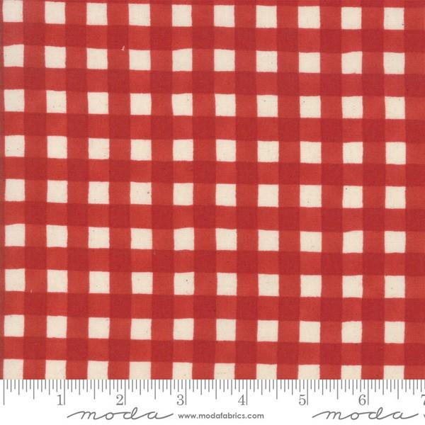 Cultivate Kindness Vintage Ginham Red by Deb Strain for Moda at The Quilt Store in Canada