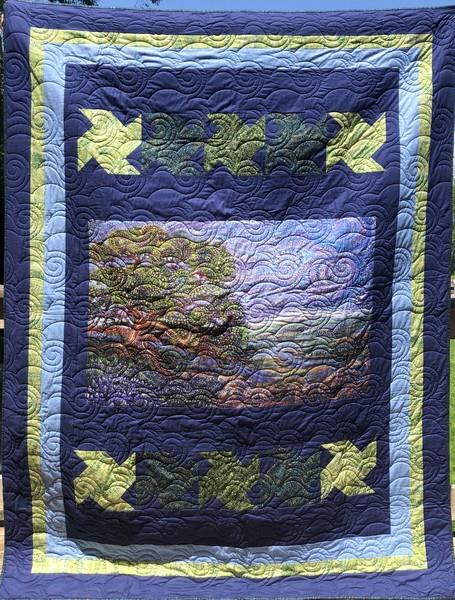 Dreamscape Quilt available at The Quilt Store in Canada