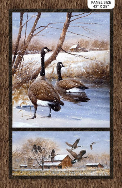 Take a Gander Canada Goose Panel by Jim Killen for Northcott available in Canada at The Quilt Store