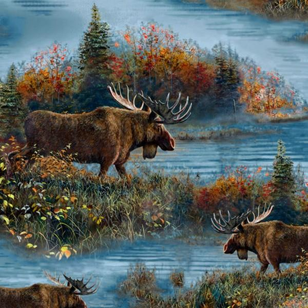 Moose Country Scenic Foliage by Jim Hansel for QT Fabrics at The Quilt Store in Canada