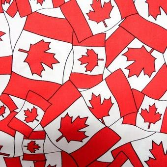 Canada Flags at The Quilt Store
