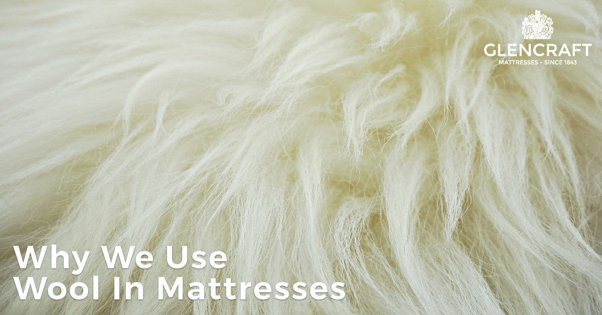 Why We Use Wool In Mattresses