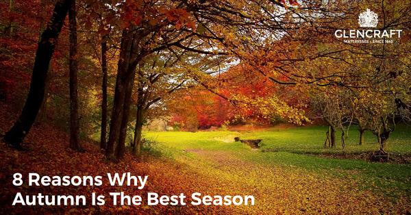 8 reasons why Autumn is the best time of year
