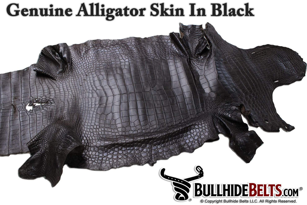 Black American Alligator Money Belt With 25