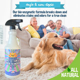 Professional Odor & Stain Remover