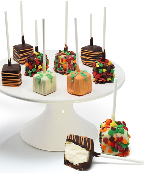 Fall Belgian Chocolate Dipped Cheesecake Pops - 10pc - Chocolate Covered Company®