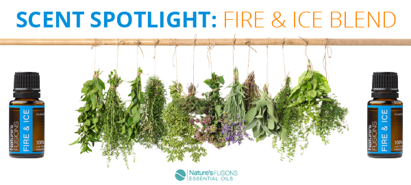 Scent Spotlight: Fire & Ice Blend