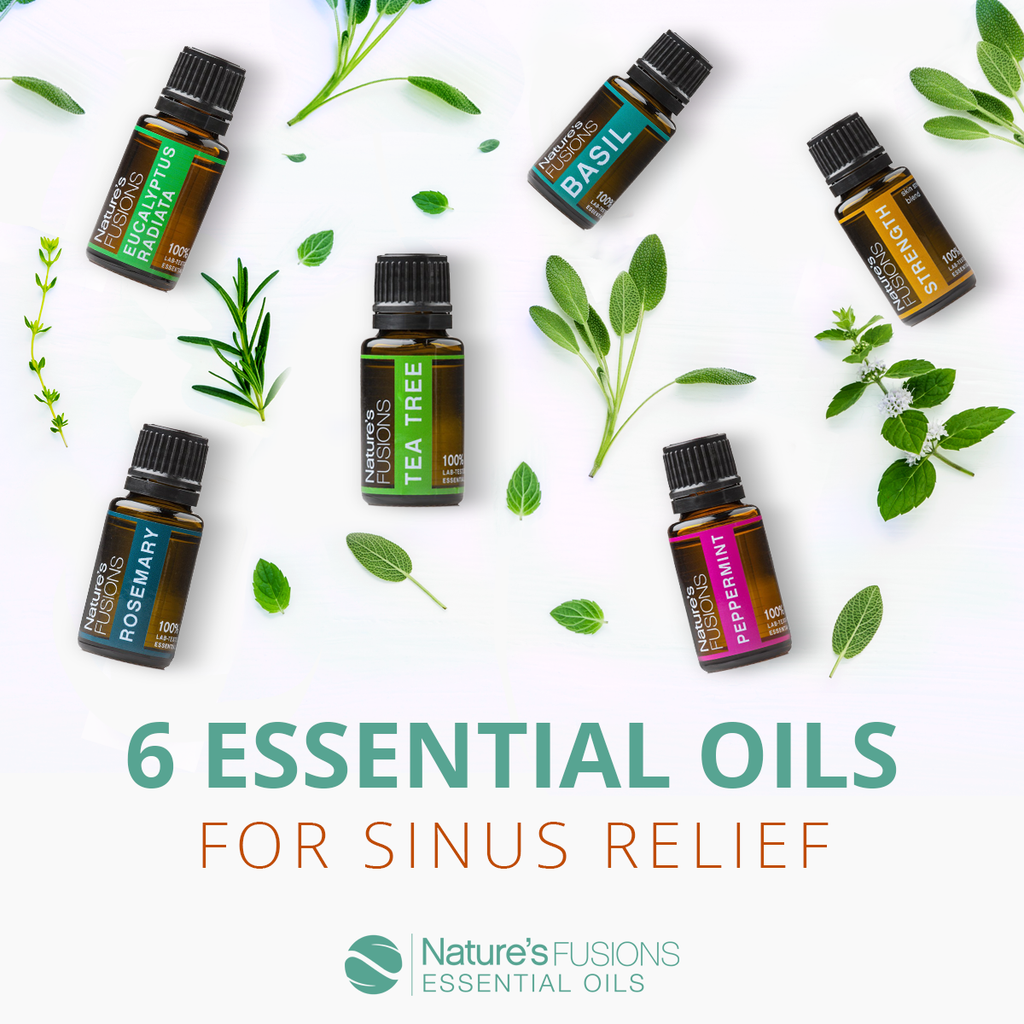 Six Essential Oils for Sinus Relief