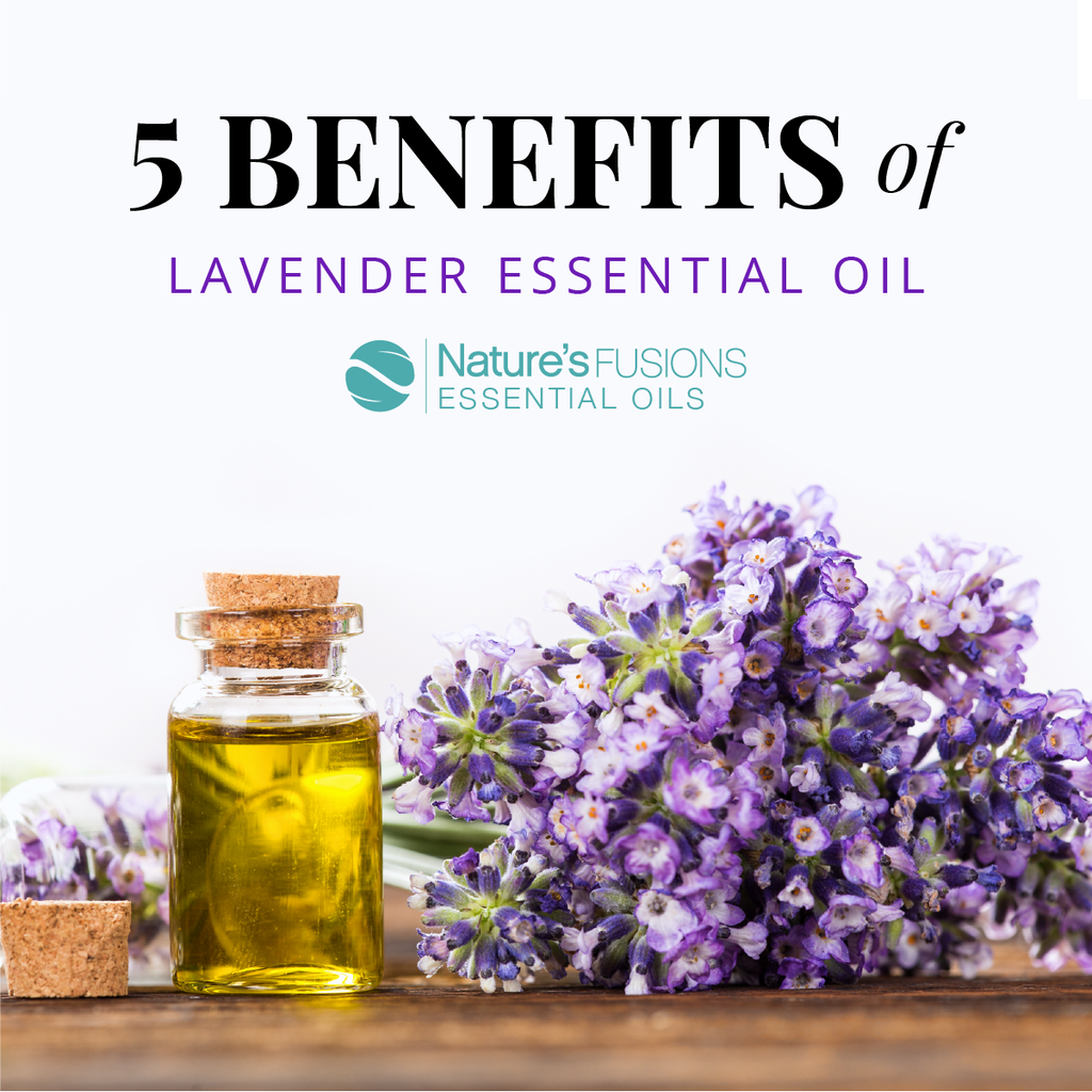 5 Benefits of Lavender Essential Oil
