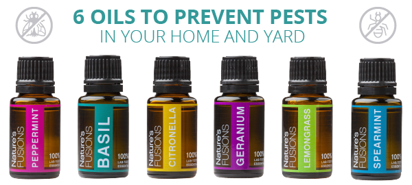 Six Oils to Prevent Pests in Your Home and Yard