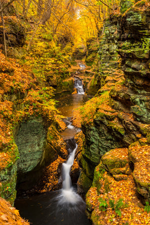Autumn at Pewits Nest State Natural Area in Wisconsin.