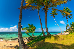 Hammock hanging between palm trees on the Caribbean coast of Little Corn Island in Nicaragua.