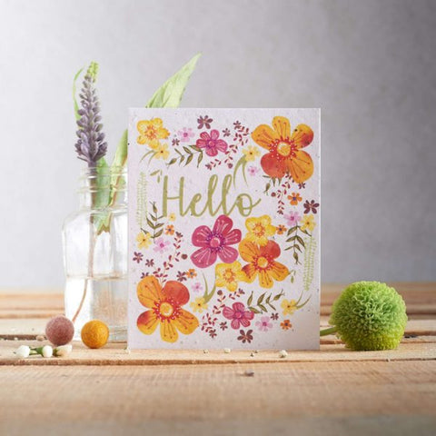 Hannah Marchant Illustrations - Plantable Seed Cards