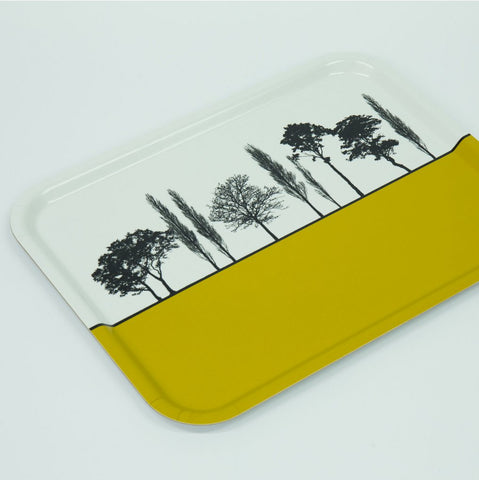 Landscape Trays - The Art Rooms