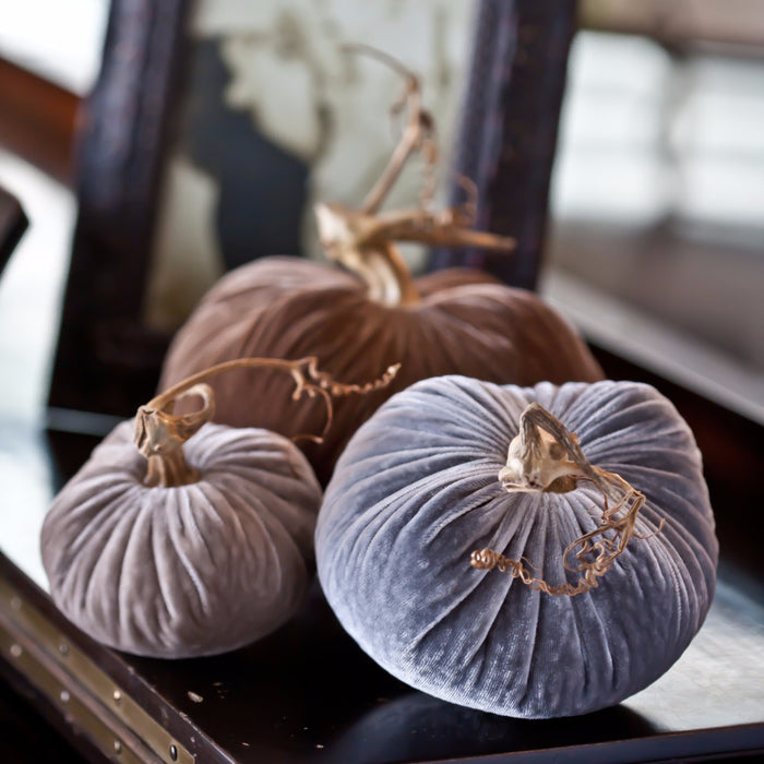 Pebble - Velvet Pumpkins