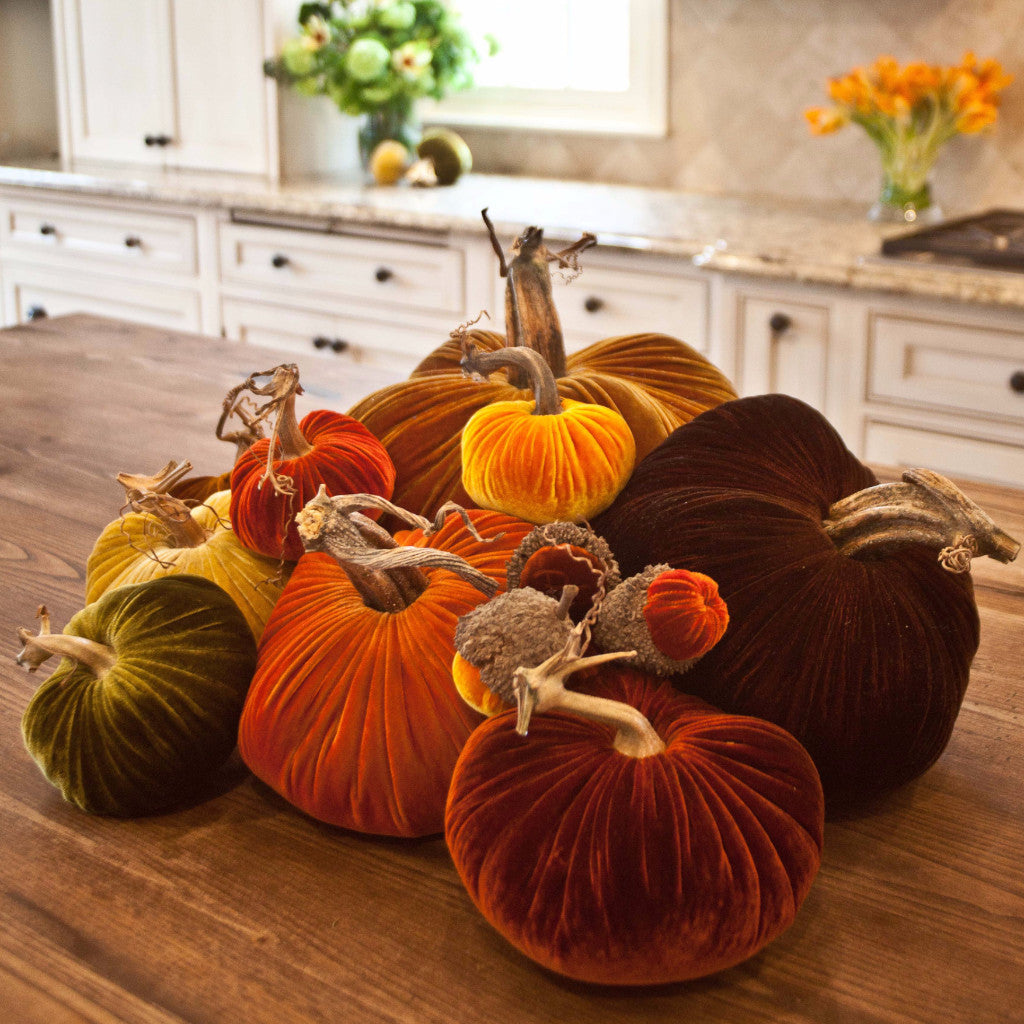 The Great Harvest - Velvet Pumpkins