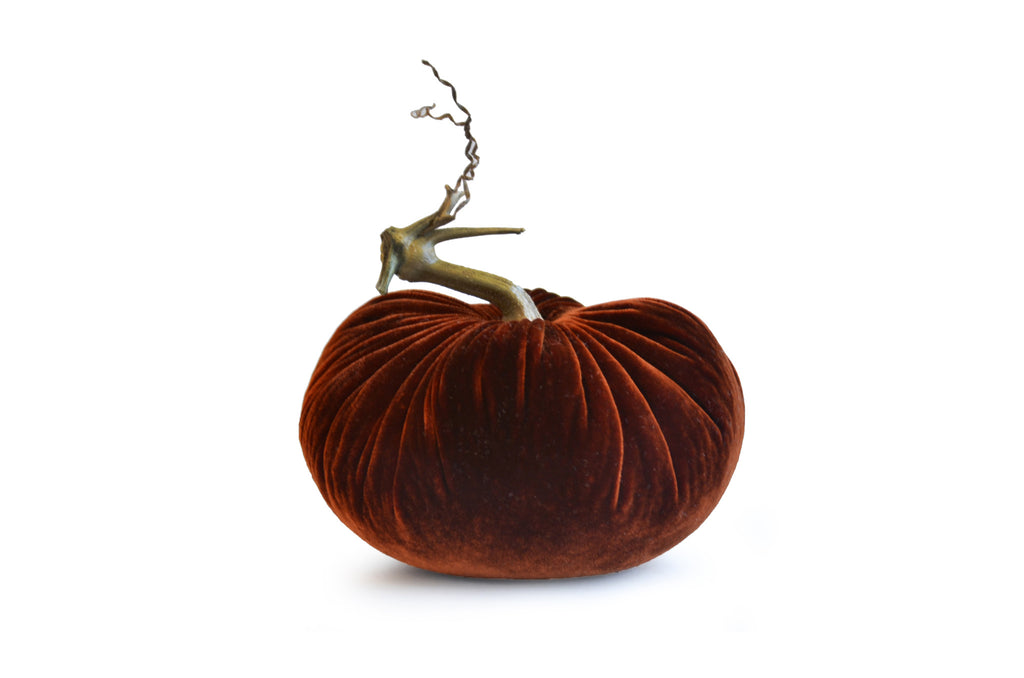 Autumn - Velvet Pumpkins