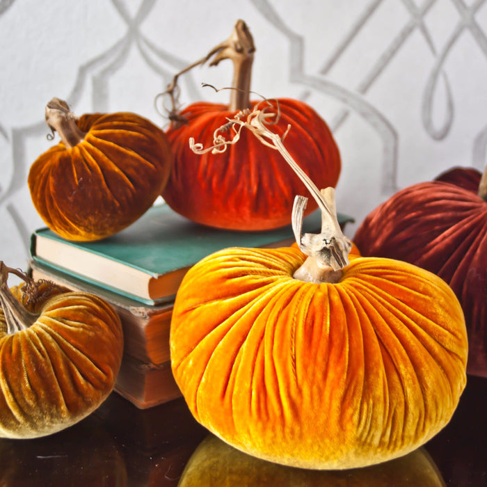 Harvest Collection - Velvet Pumpkins