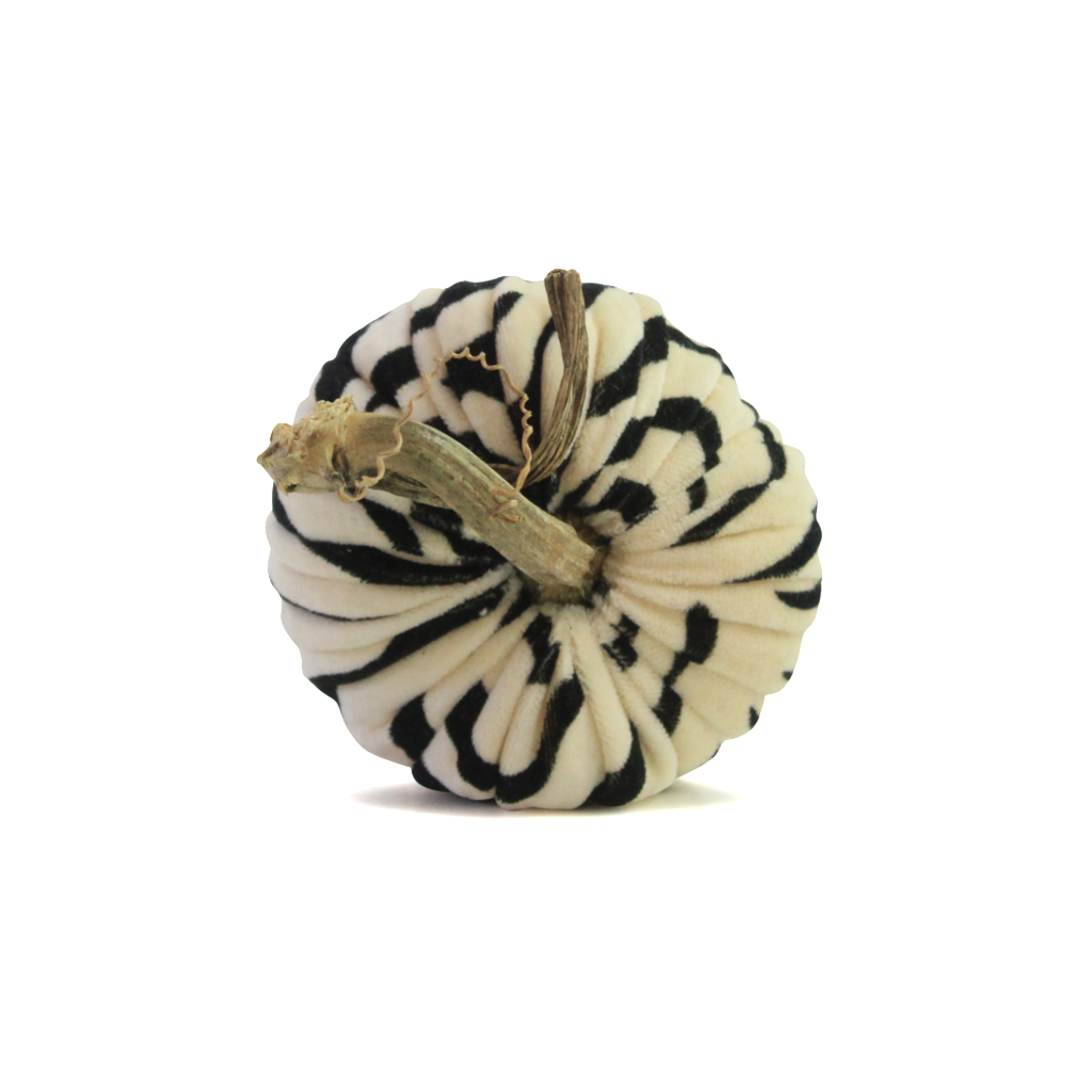 Zebra (Black) Pumpkins
