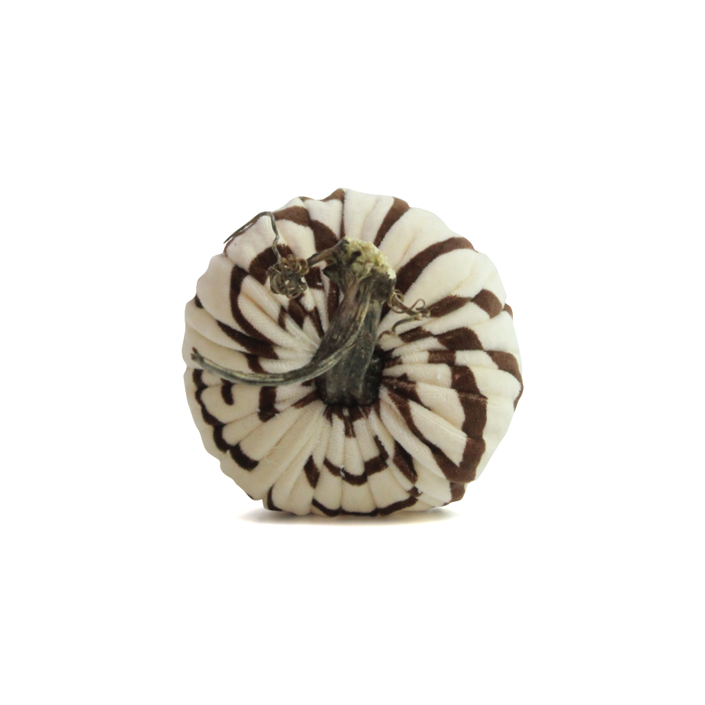 Zebra (Brown) Pumpkins