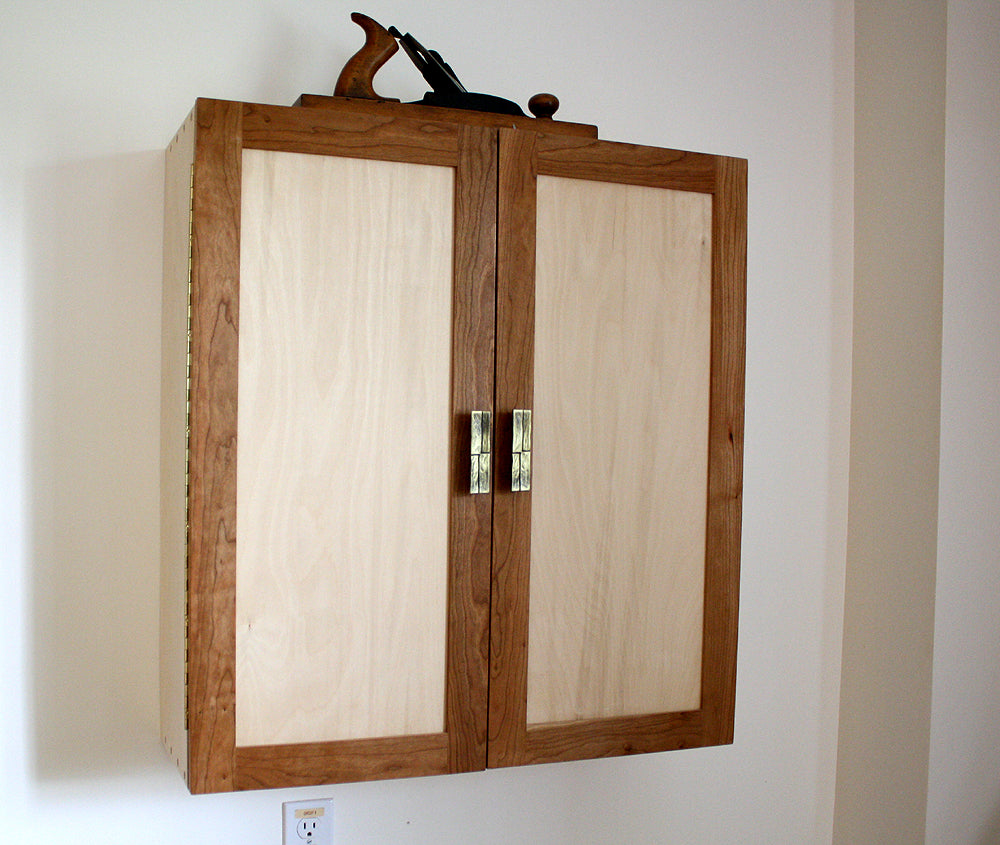 Wall-mounted tool cabinet