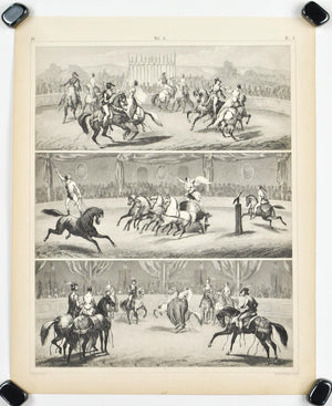 Chariot Horses Equestrian Feats Antique Print 1857